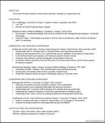 Professional Resume Example Consultant Free Examples And Samples ...