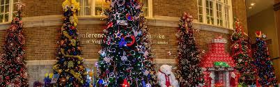 Christmas Lights Roanoke Va 2018 Ideas For Friends Family This Holiday Season Tour Roanoke
