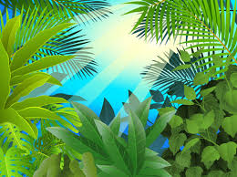 jungle background vector. Fine Vector Elements Of Tropical Scenery Background Vector Throughout Jungle Background Vector N