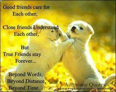 Good Morning Buddy Quotes Best of 24 Best Friendship Images On Pinterest Best Friends Friendship