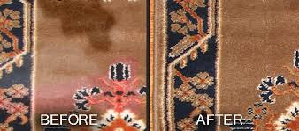 area rug cleaning before and after