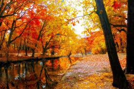 Fall Landscaping Garden Design Garden Design With Autumn Fall Landscape Nature
