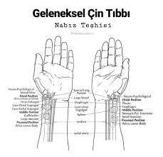 Geleneksel Çin Tıbbı ve Nabız Teşhisi - Laya Store - Holistic Terapi