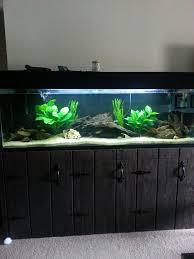 fishtank furniture. Fish5.jpeg Fishtank Furniture I