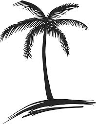 Coloriage Palmier Facile Jecolorie En Dessin De Palmier Destin S