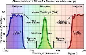 Zeiss Microscopy Online Campus Microscopy Basics