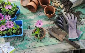 basic gardening.  Basic Garden Gloves Purple Flowers And Gardening Tools Displayed On Wooden Table For Basic Gardening Telegraph