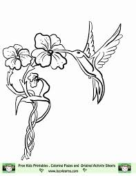 Small Picture Hummingbird Coloring Page Coloring Home