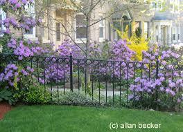 Small Picture Perennial Flower Garden Design