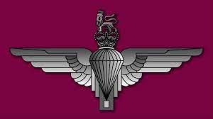 Para Special Forces Logo Wallpaper - HD ...