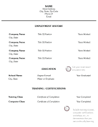 Resume Skills Sample Stunning Computer Skills In Resume Sample Businessdegreeonlineco