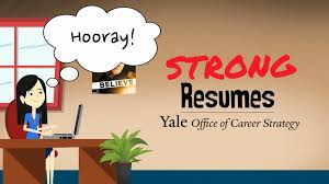 Professional Resume Writing Software   Free Resume Example And      Resume Writers Seattle Wa KalushvideocomWriting A Resume Cover letter  examples