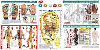 Acupuncture Points 3 Body 1 Ear Charts Set Of 4 Free