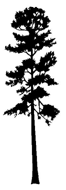 tall tree vector. shape of southern tree fto be painted on a pallet project tall vector