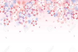 Cherry Blossom Background Abstract Vector Background