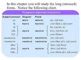 Spanish Possessive Pronouns Chart Image Result For Spanish Possessive Pronouns Spanish