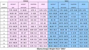 Pitbull Age Chart 36 Expert Pitbull Age Weight Chart