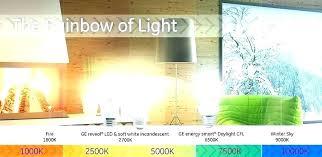 Soft White Vs Daylight Bulbs Britecontent Co