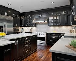 Marvelous Black Kitchen Cabinets Black Cabinets Design Ideas Remodel Pictures Houzz  Minimalist
