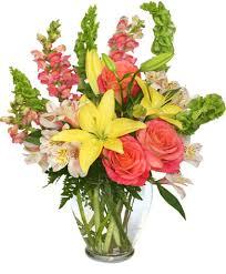 florist in aberdeen nc. Brilliant Aberdeen Carefree Spirit Flower Arrangement On Florist In Aberdeen Nc Q