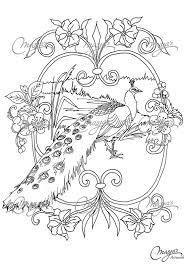 Small Picture Masjas Peacock Coloring Page made by Masja van den Berg