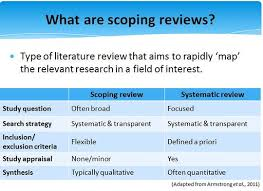 Literature review research paper   Affordable Price