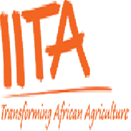 International Institute of Tropical Agriculture (IITA) HND/Bsc/Msc Job Recruitment (5 Positions)