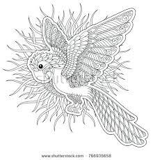 Adult Bird Coloring Pages To Printable Jokingartcom Adult Bird