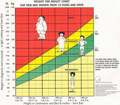 Healthy Weight Range Chart What Is Body Mass Index Better Fitness Daily