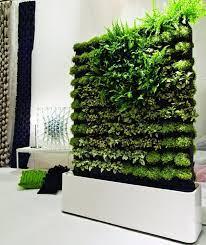 indoor and outdoor vertical gardens