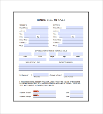 Equine Bill Of Sales Horse Bill Of Sale 8 Free Word Excel Pdf Format Downlaod Free