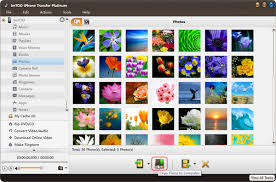 How to move photo from iPhone to iTunes ImTOO