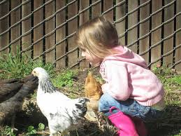 the learning garden preschool and