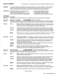 Senior Account Executive Resume Template Resume Resume Examples