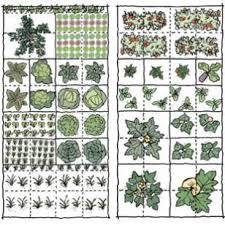 Small Picture Best 25 How to plan a vegetable garden ideas on Pinterest
