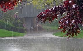 top rainy season items com rainy season essay want a site to write thesis essay for me