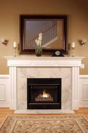 Ecosmart Fire Firebox 1200SS Modern Ventless Fireplace Insert Ventless Fireplaces