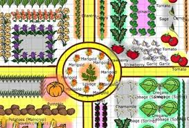 this garden plan is a great one i love the way they created it visually because it makes it easier to follow
