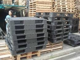 plastic pallets for sale. plastic pallets for sale e