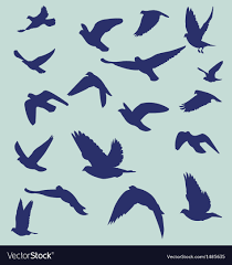 blue bird flying silhouette. Modren Silhouette Silhouetted Flying Bird Vector Image And Blue Bird Flying Silhouette R