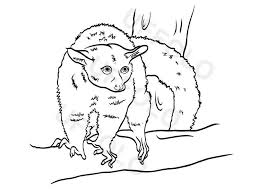Utilizzare I Disegni Degli Animali Per Bambini Uffolo