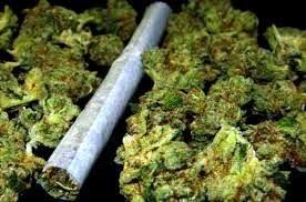 Наркодилер выписывал своим клиентам квитанции за гашиш и марихуану