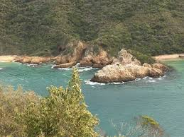 driving the garden route from cape town