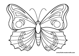 Dessin De Coloriage Papillon Imprimer Cp20003
