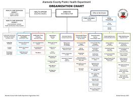 42 Perspicuous Nurse Organizational Chart