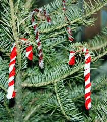 Christmas Tree With Presents IllustrationChristmas Tree With Candy Canes