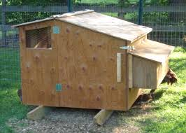 Chicken Coops For Sale Nz 20 with Chicken Coops For Sale Nz
