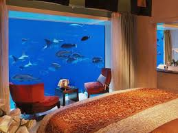 underwater restaurant disney world. Underwater Hotels Restaurant Disney World