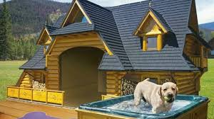 Top 10+ Most Luxurious and Cool Dog Houses