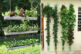 vertical garden wall planter